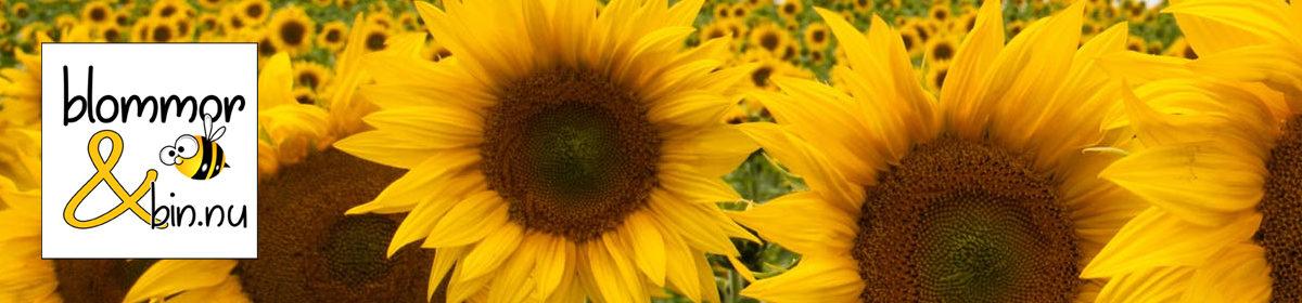 Blommor och bin.nu
